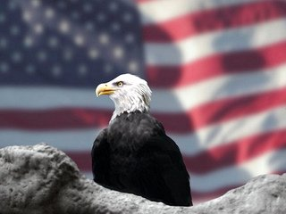 USA Flag Etiquette